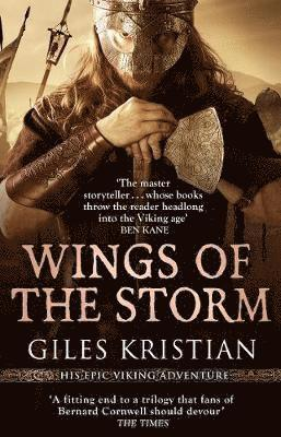 bokomslag Wings of the Storm