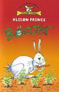 bokomslag Boojer