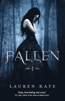 bokomslag Fallen (Fallen I)