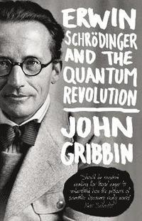 bokomslag Erwin Schrodinger and the Quantum Revolution