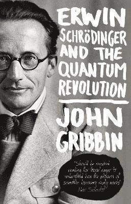 bokomslag Erwin Schrodinger and the Quantum Revolution