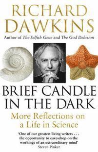 bokomslag Brief Candle in the Dark