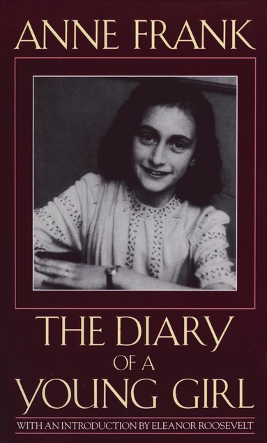 bokomslag Diary of a young girl