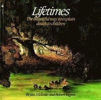 bokomslag Lifetimes