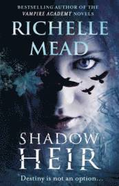 bokomslag Shadow Heir (Dark Swan 4)