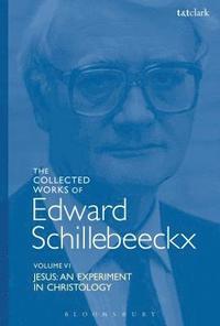 bokomslag The Collected Works of Edward Schillebeeckx Volume 6