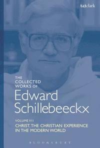 bokomslag The Collected Works of Edward Schillebeeckx Volume 7