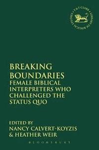 bokomslag Breaking Boundaries