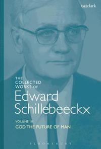 bokomslag The Collected Works of Edward Schillebeeckx Volume 3