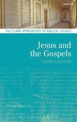 bokomslag Jesus and the gospels