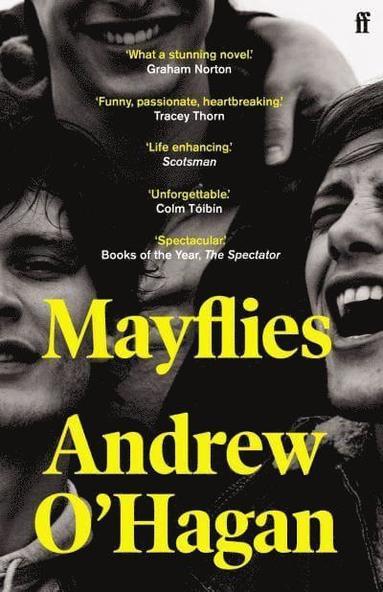 bokomslag Mayflies