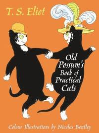 bokomslag The Illustrated Old Possum