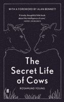 bokomslag The Secret Life of Cows