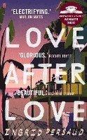 bokomslag Love After Love