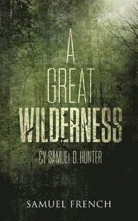 bokomslag A Great Wilderness