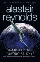 bokomslag Diamond Dogs, Turquoise Days