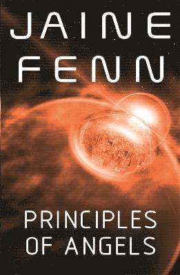 bokomslag Principles of Angels