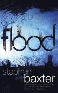 bokomslag Flood