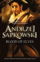 bokomslag Blood of Elves