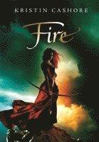 bokomslag Fire