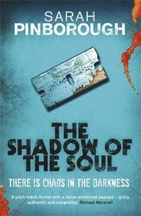 bokomslag The Shadow of the Soul