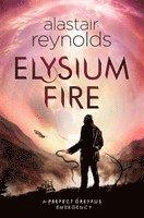 bokomslag Elysium Fire