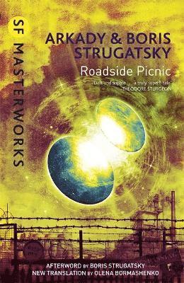 bokomslag Roadside Picnic