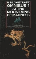 bokomslag At the Mountains of Madness and Other Novels of Terror