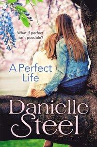 bokomslag A Perfect Life