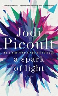 bokomslag Spark Of Light
