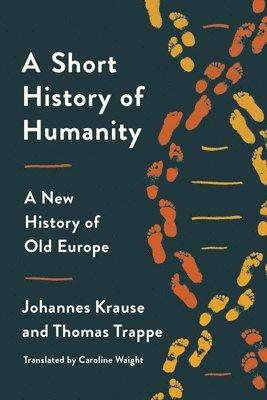 bokomslag Short History Of Humanity