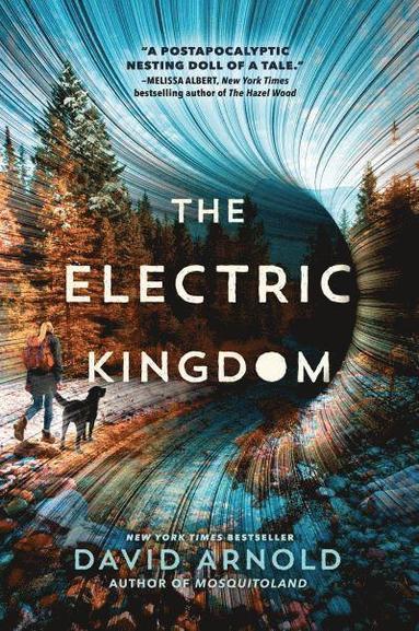 bokomslag The Electric Kingdom