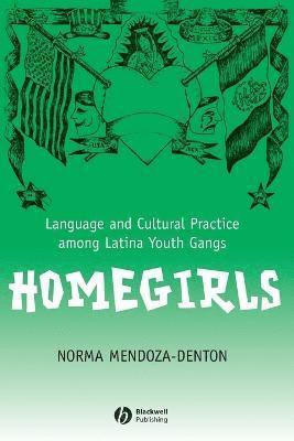 bokomslag Homegirls: Language and Cultural Practice Among Latina Youth Gangs
