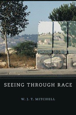 bokomslag Seeing Through Race