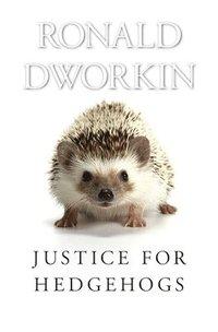 bokomslag Justice for Hedgehogs