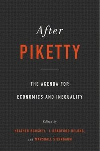 bokomslag After Piketty: The Agenda for Economics and Inequality