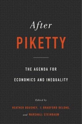 bokomslag After Piketty