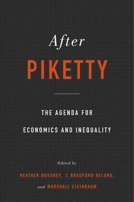bokomslag After piketty - the agenda for economics and inequality