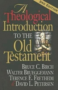 bokomslag A Theological Introduction to the Old Testament
