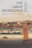 bokomslag Great divergence - china, europe, and the making of the modern world econom