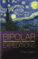 bokomslag Bipolar Expeditions: Mania and Depression in American Culture