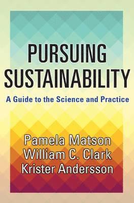 bokomslag Pursuing Sustainability