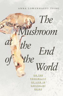 bokomslag Mushroom at the end of the world - on the possibility of life in capitalist