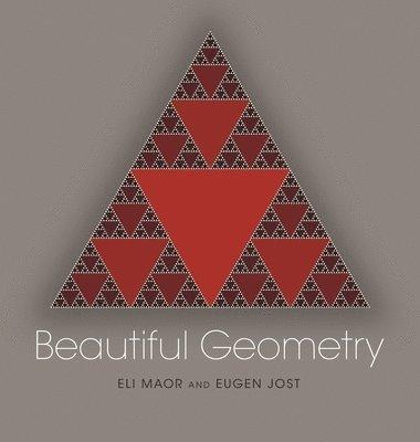 bokomslag Beautiful Geometry