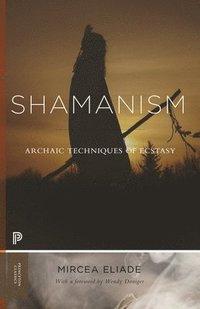 bokomslag Shamanism