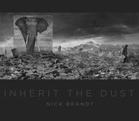 bokomslag Nick Brandt: Inherit the Dust