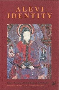 bokomslag Alevi Identity