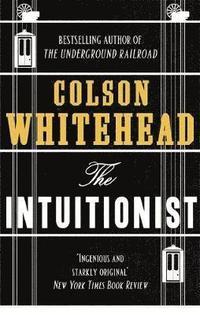 bokomslag Intuitionist