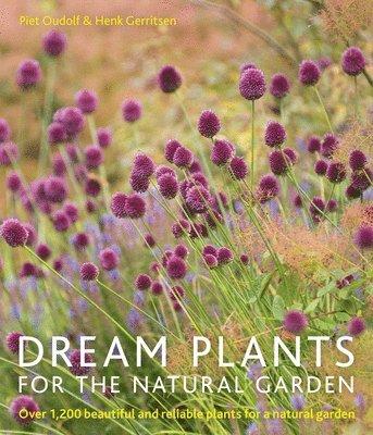 bokomslag Dream Plants for the Natural Garden