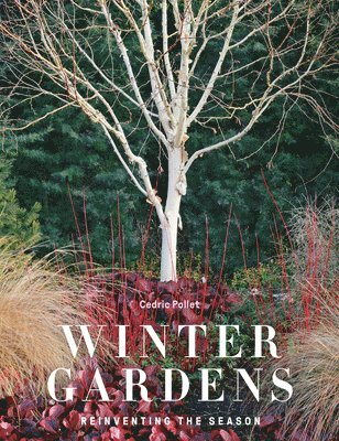 bokomslag Winter Gardens: Reinventing the Season